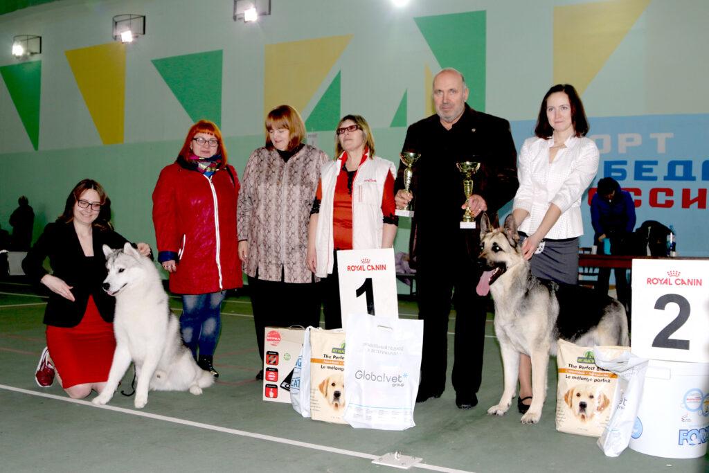 26 января 2019 года Региональная выставка собак ранга САС-КЧФ г. Воронеж