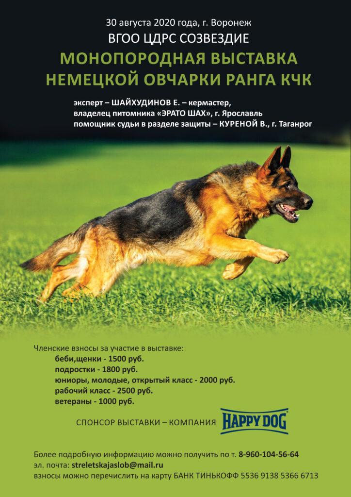 30 августа 2020 Монопородная выставка немецкой овчарки ранга КЧК