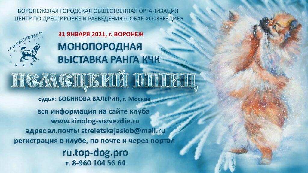 31 января 2021 Закрытое зоотехническое мероприятие — Монопородная выставка ранга КЧК немецкий шпиц